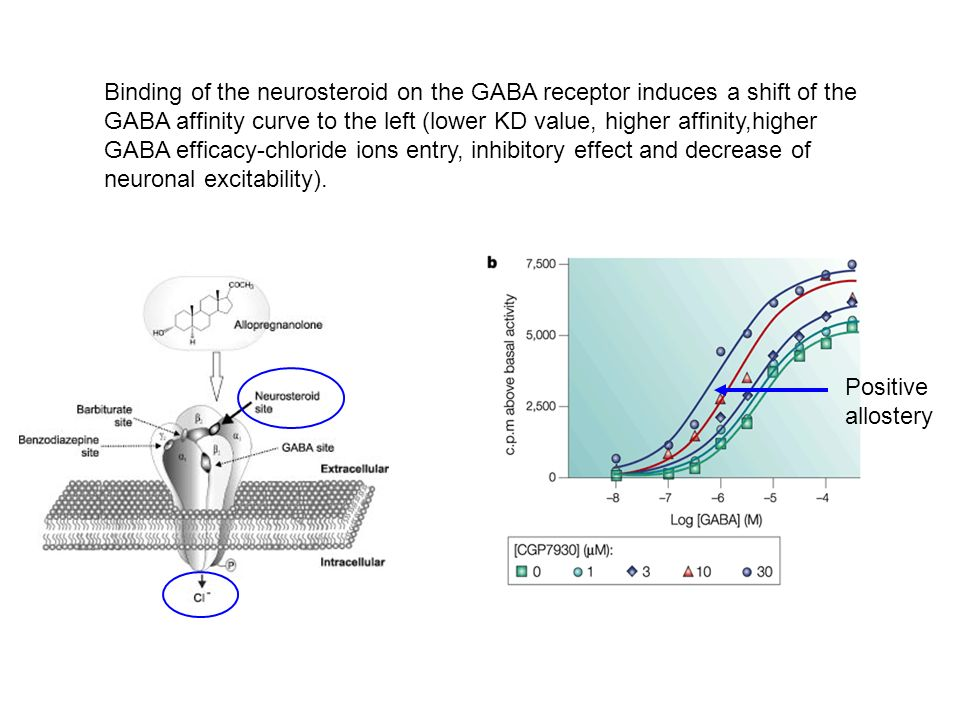 Binding of the neurosteroid on the GABA receptor induces a shift of the GABA affinity curve to the left (lower KD value, higher affinity,higher GABA e