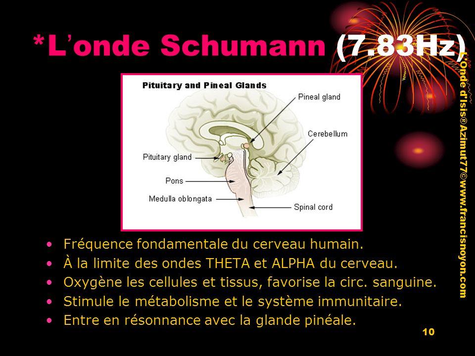 10 *Londe Schumann (7.83Hz) Fréquence fondamentale du cerveau humain. À la limite des ondes THETA et ALPHA du cerveau. Oxygène les cellules et tissus,