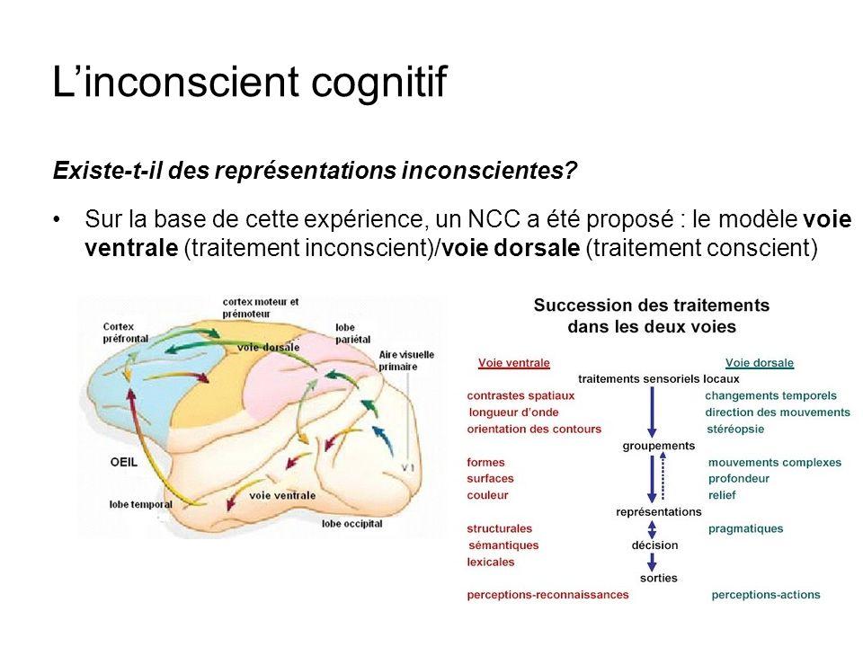 Linconscient cognitif Existe-t-il des représentations inconscientes? Sur la base de cette expérience, un NCC a été proposé : le modèle voie ventrale (