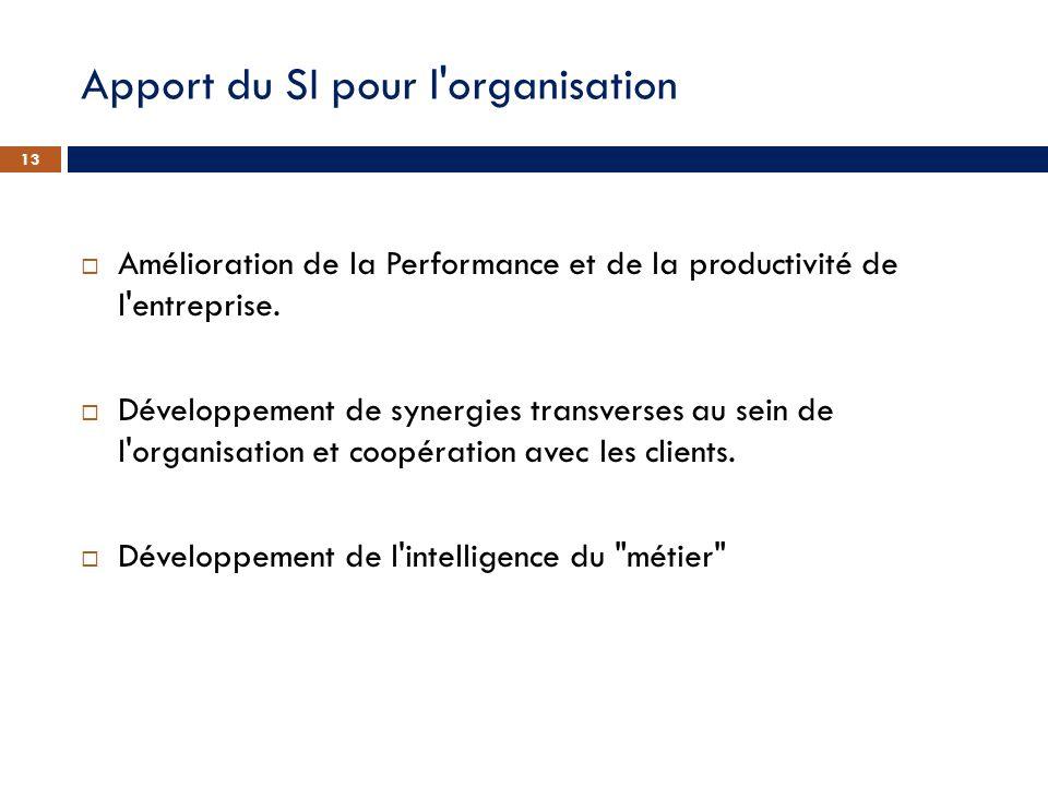 Apport du SI pour l'organisation Amélioration de la Performance et de la productivité de l'entreprise. Développement de synergies transverses au sein