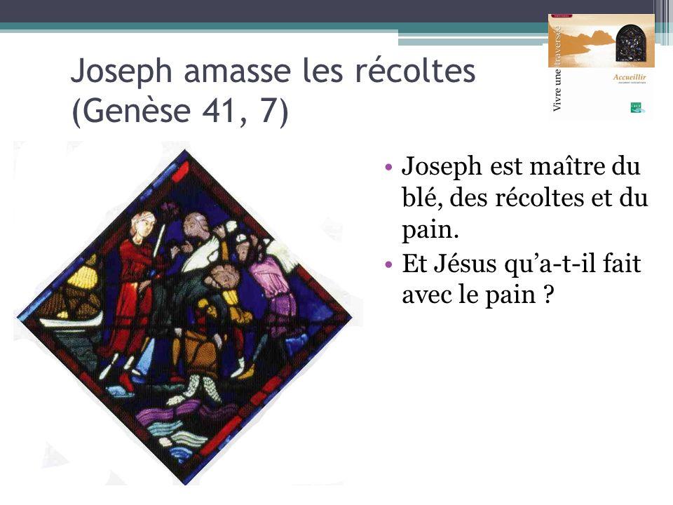 Joseph amasse les récoltes (Genèse 41, 7) Joseph est maître du blé, des récoltes et du pain. Et Jésus qua-t-il fait avec le pain ?