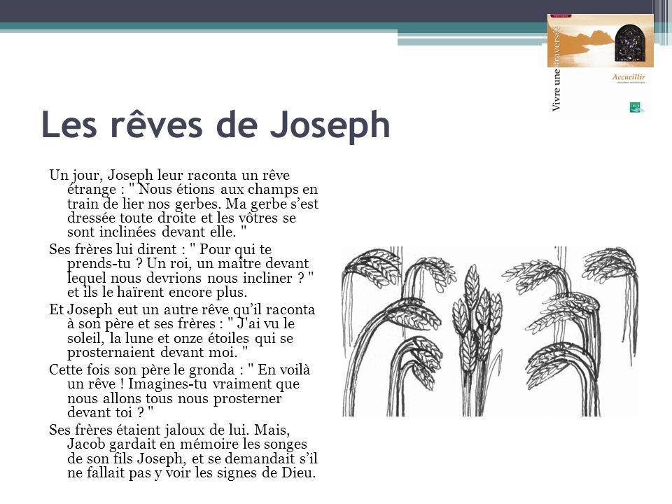 Les rêves de Joseph Un jour, Joseph leur raconta un rêve étrange :