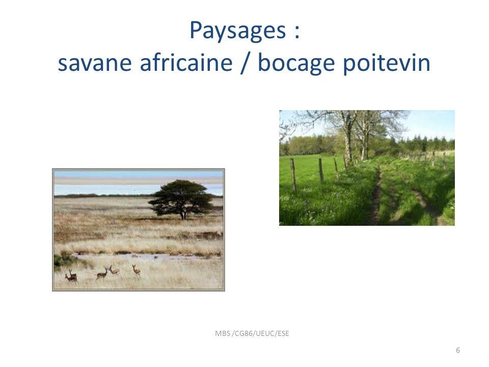 Paysages : savane africaine / bocage poitevin MBS /CG86/UEUC/ESE 6