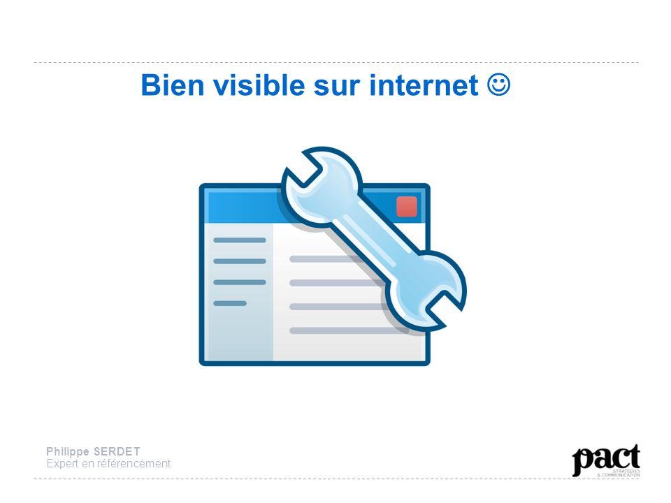 Bien visible sur internet Philippe SERDET Expert en référencement