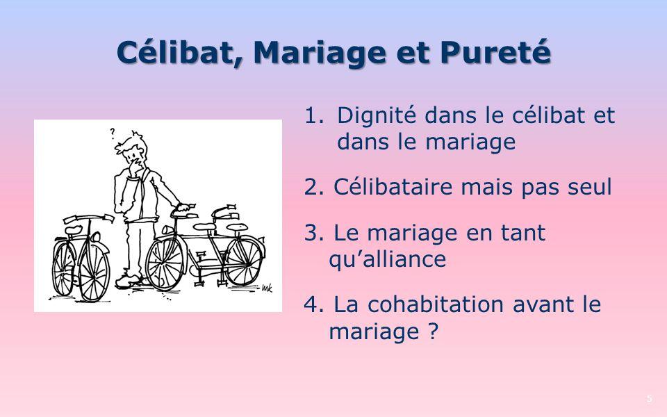 Célibat, Mariage et Pureté 5 1.Dignité dans le célibat et dans le mariage 2. Célibataire mais pas seul 3. Le mariage en tant qualliance 4. La cohabita