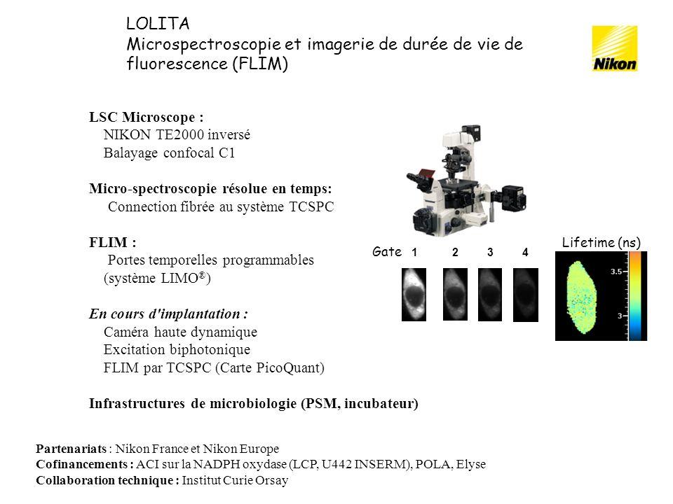 LSC Microscope : NIKON TE2000 inversé Balayage confocal C1 Micro-spectroscopie résolue en temps: Connection fibrée au système TCSPC FLIM : Portes temp