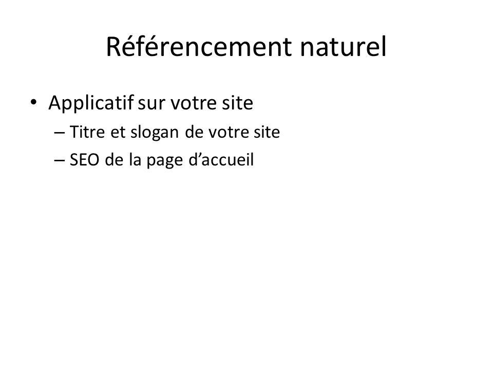 Référencement naturel Applicatif sur votre site – Titre et slogan de votre site – SEO de la page daccueil