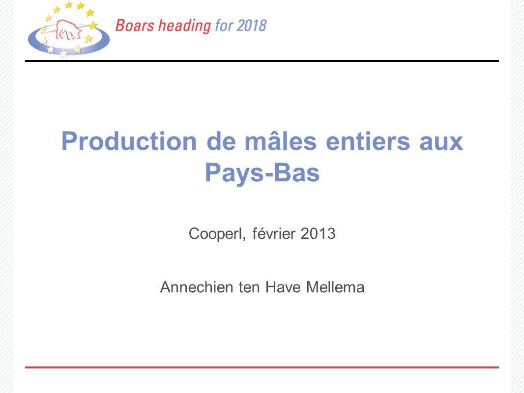 Production de mâles entiers aux Pays-Bas Cooperl, février 2013 Annechien ten Have Mellema