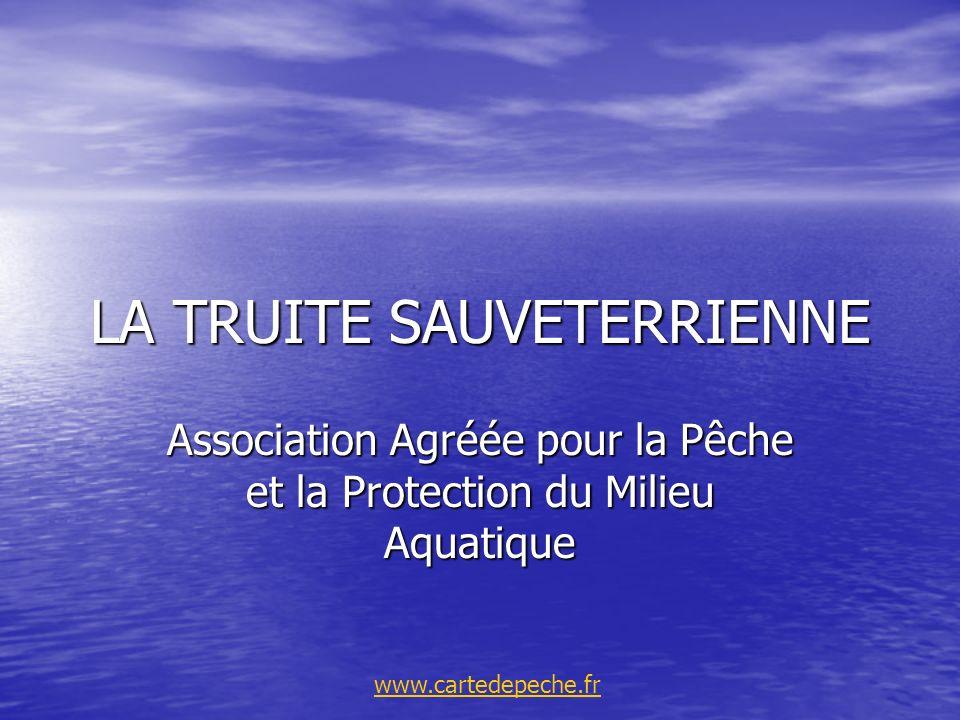LA TRUITE SAUVETERRIENNE Association Agréée pour la Pêche et la Protection du Milieu Aquatique www.cartedepeche.fr