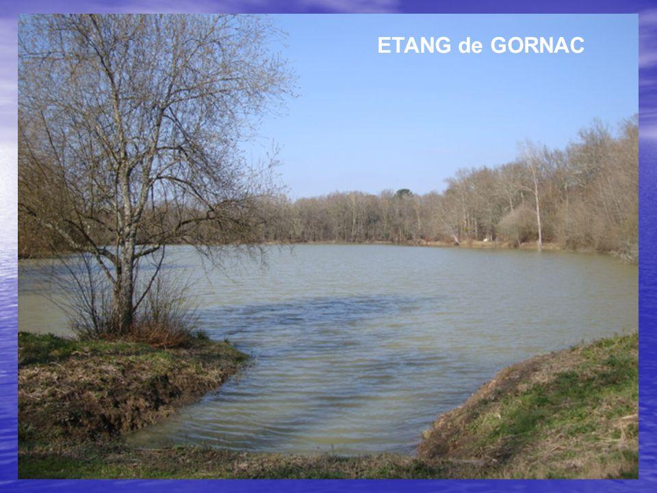 ETANG de GORNAC