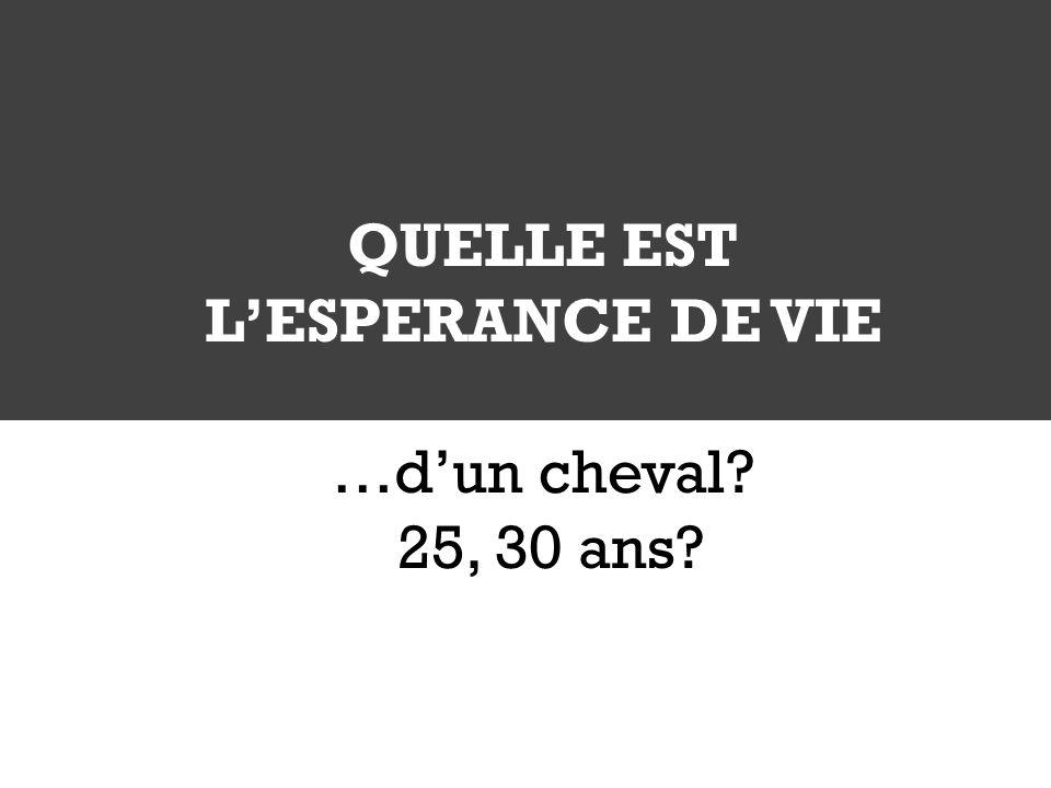 QUELLE EST LESPERANCE DE VIE …dun cheval? 25, 30 ans?