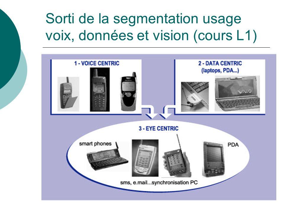 Sorti de la segmentation usage voix, données et vision (cours L1)