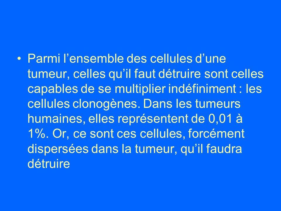 Parmi lensemble des cellules dune tumeur, celles quil faut détruire sont celles capables de se multiplier indéfiniment : les cellules clonogènes. Dans