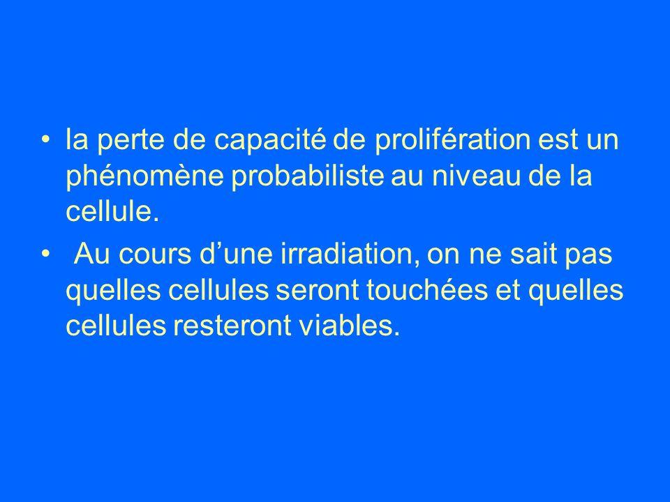 la perte de capacité de prolifération est un phénomène probabiliste au niveau de la cellule. Au cours dune irradiation, on ne sait pas quelles cellule