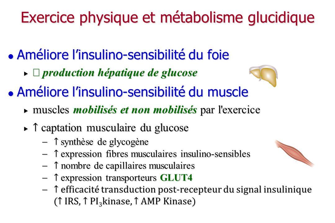 Rémanence de lamélioration de la sensibilité musculaire à l insuline Persiste plusieurs heures après l arrêt de l exercice physique (~ 30 h) Persiste plusieurs heures après l arrêt de l exercice physique (~ 30 h) reconstitution des stocks de glycogène musculaire reconstitution des stocks de glycogène musculaire dure tant que les stocks ne sont pas reconstitués dure tant que les stocks ne sont pas reconstitués Conséquences cliniques : Conséquences cliniques : aires sous la courbe de l insulinémie et de la glycémie post-prandiales aires sous la courbe de l insulinémie et de la glycémie post-prandiales besoins en insuline besoins en insuline