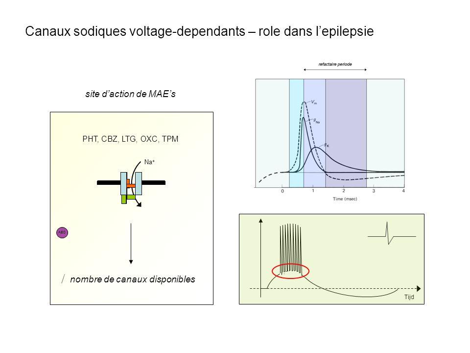 PHT, CBZ, LTG, OXC, TPM site daction de MAEs Na + AED nombre de canaux disponibles Tijd Canaux sodiques voltage-dependants – role dans lepilepsie