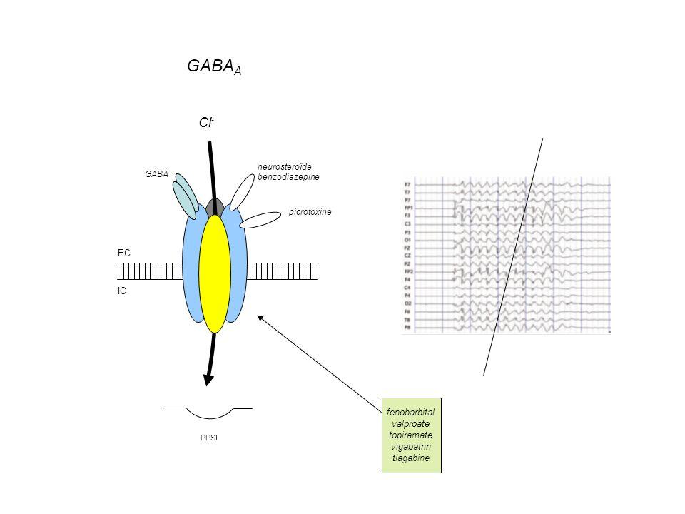 EC IC Cl - PPSI GABA A neurosteroïde benzodiazepine picrotoxine GABA fenobarbital valproate topiramate vigabatrin tiagabine