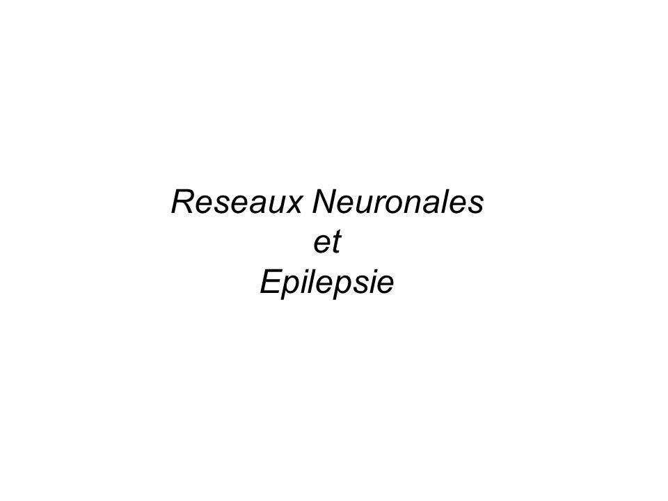 Reseaux Neuronales et Epilepsie