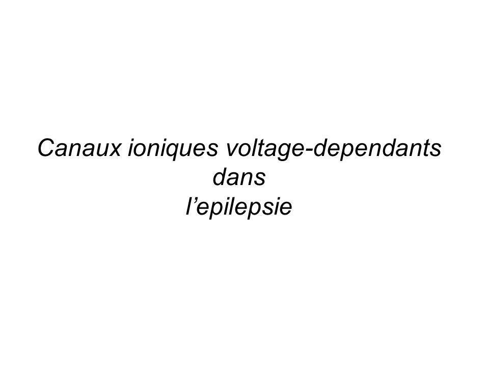 Canaux ioniques voltage-dependants dans lepilepsie