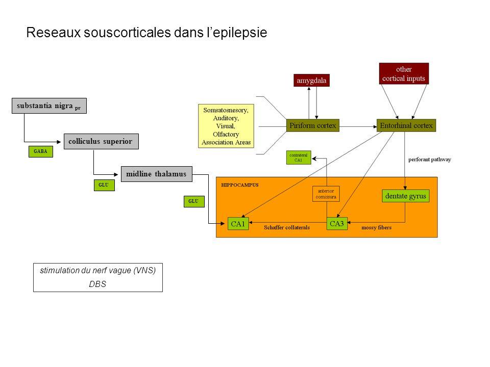 Reseaux souscorticales dans lepilepsie substantia nigra pr colliculus superior midline thalamus GABA GLU stimulation du nerf vague (VNS) DBS