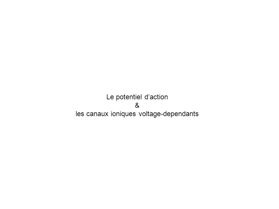 Le potentiel daction & les canaux ioniques voltage-dependants