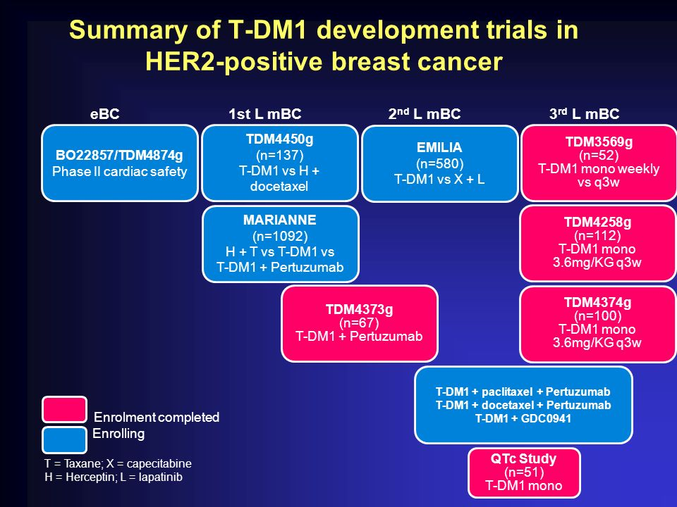 Summary of T-DM1 development trials in HER2-positive breast cancer eBC1st L mBC2 nd L mBC3 rd L mBC EMILIA (n=580) T-DM1 vs X + L TDM3569g (n=52) T-DM