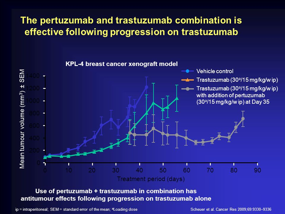 The pertuzumab and trastuzumab combination is effective following progression on trastuzumab Scheuer et al. Cancer Res 2009;69:9330–9336ip = intraperi