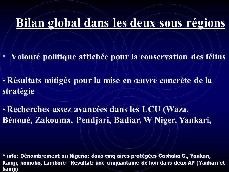 Bilan global dans les deux sous régions Volonté politique affichée pour la conservation des félins Résultats mitigés pour la mise en œuvre concrète de