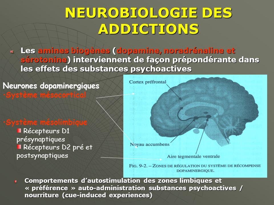 NEUROBIOLOGIE DES ADDICTIONS Les amines biogènes (dopamine, noradrénaline et sérotonine) interviennent de façon prépondérante dans les effets des subs