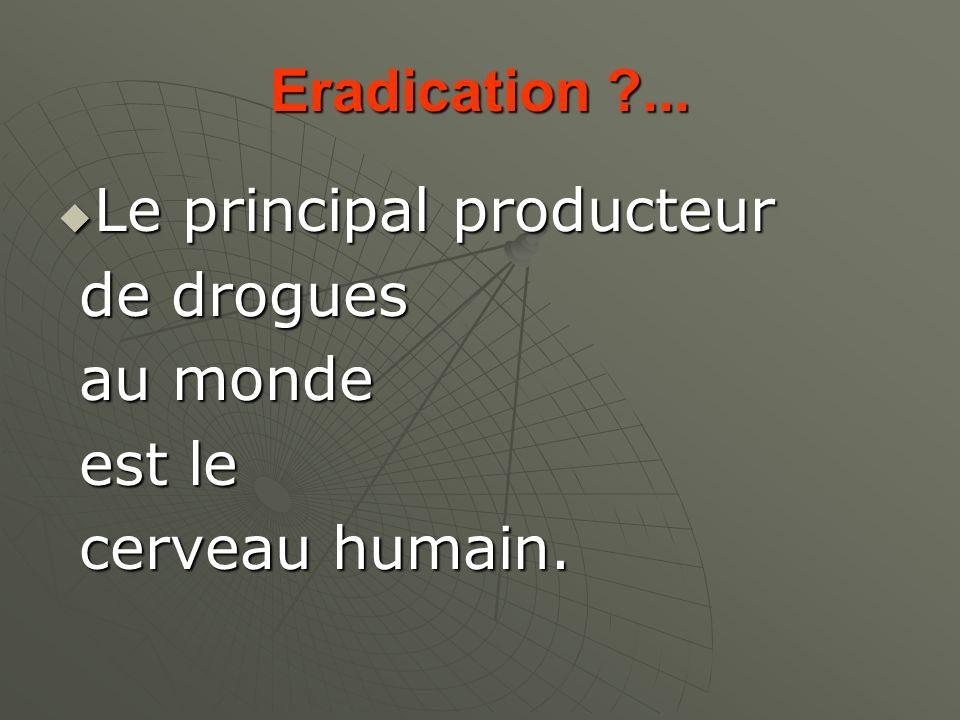 Eradication ?... Le principal producteur Le principal producteur de drogues de drogues au monde au monde est le est le cerveau humain. cerveau humain.