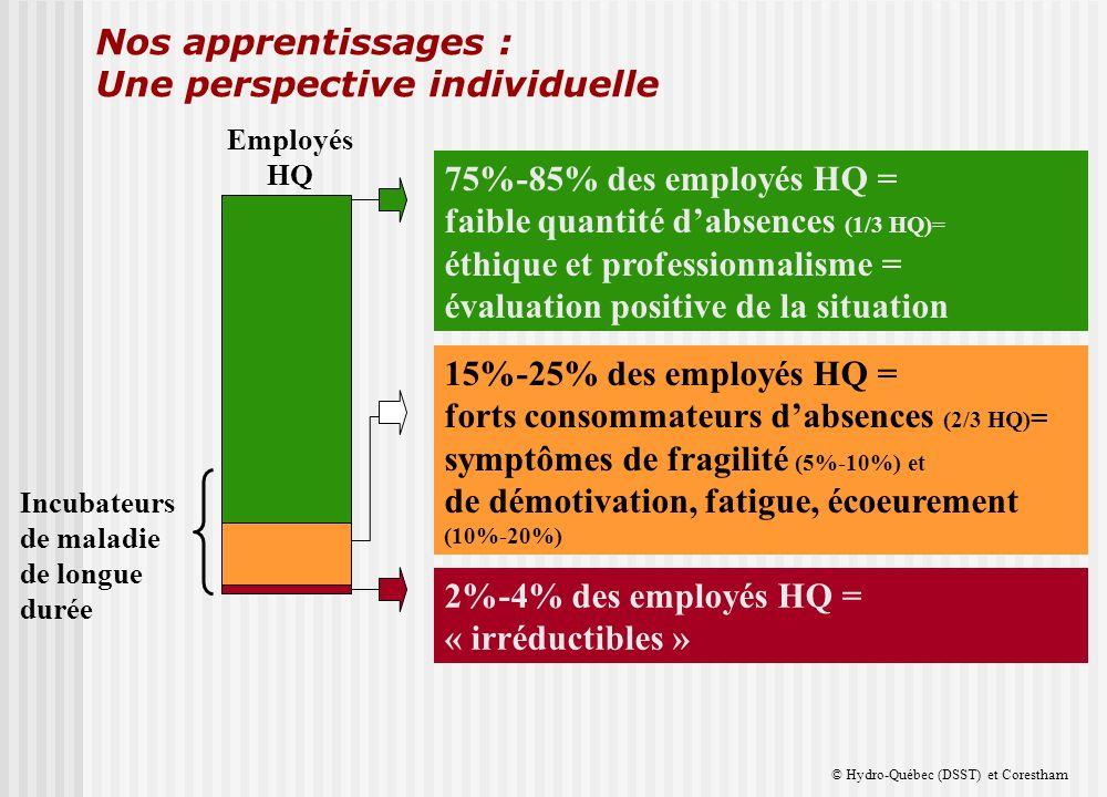 Nos apprentissages : Une perspective individuelle © Hydro-Québec (DSST) et Corestham 15%-25% des employés HQ = forts consommateurs dabsences (2/3 HQ) = symptômes de fragilité (5%-10%) et de démotivation, fatigue, écoeurement (10%-20%) Incubateurs de maladie de longue durée 2%-4% des employés HQ = « irréductibles » 75%-85% des employés HQ = faible quantité dabsences (1/3 HQ)= éthique et professionnalisme = évaluation positive de la situation Employés HQ