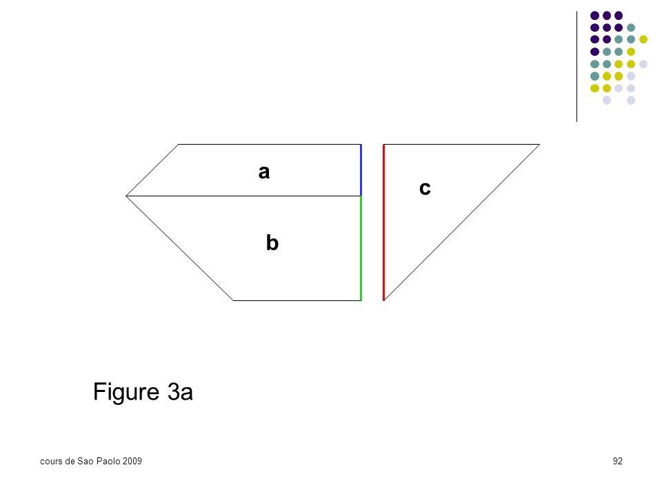 cours de Sao Paolo 200992 a b c Figure 3a