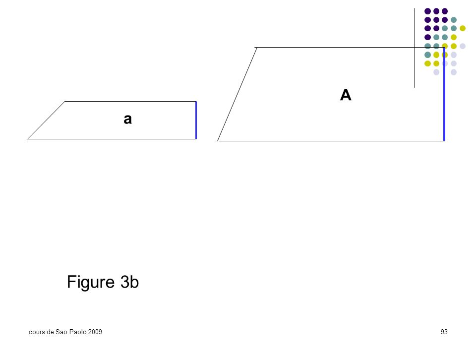 cours de Sao Paolo 200993 a A Figure 3b
