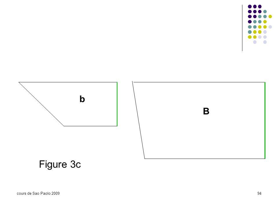 cours de Sao Paolo 200994 b B Figure 3c