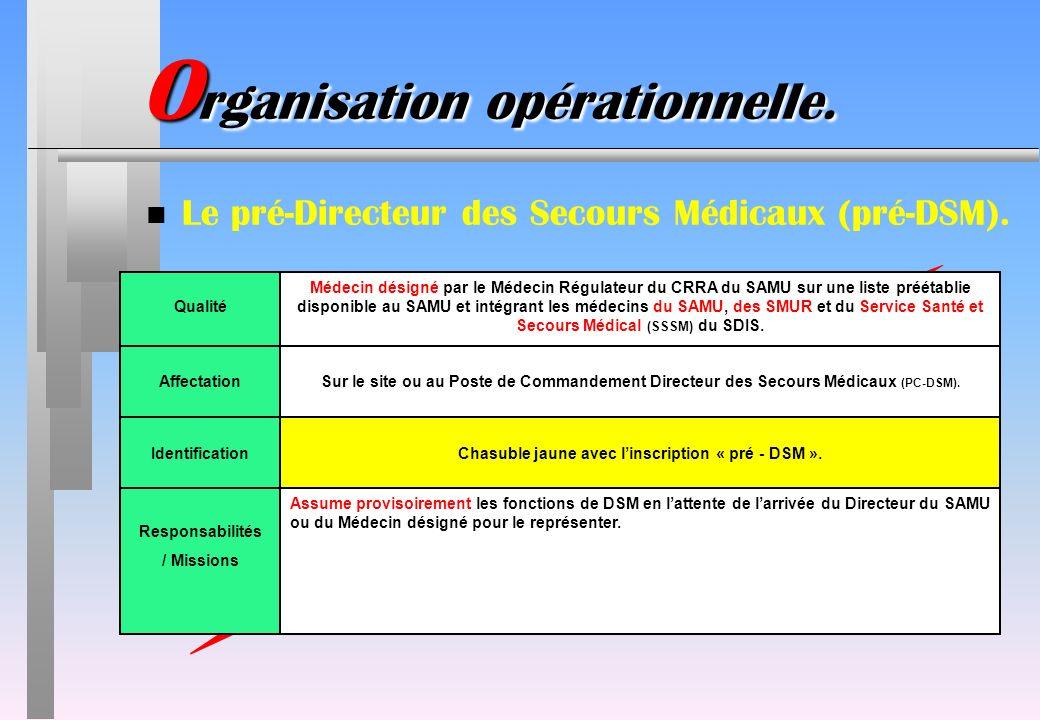 ATTENTION : NOUVEAUTE !!! IdentificationChasuble jaune avec linscription « pré - DSM ». Responsabilités / Missions Assume provisoirement les fonctions