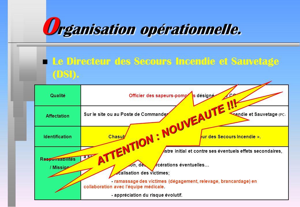 IdentificationChasuble jaune avec linscription « Directeur des Secours Incendie ». Responsabilités / Missions Responsable de la lutte contre le sinist