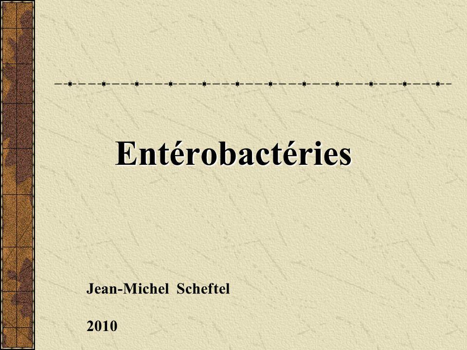 Entérobactéries Jean-Michel Scheftel 2010
