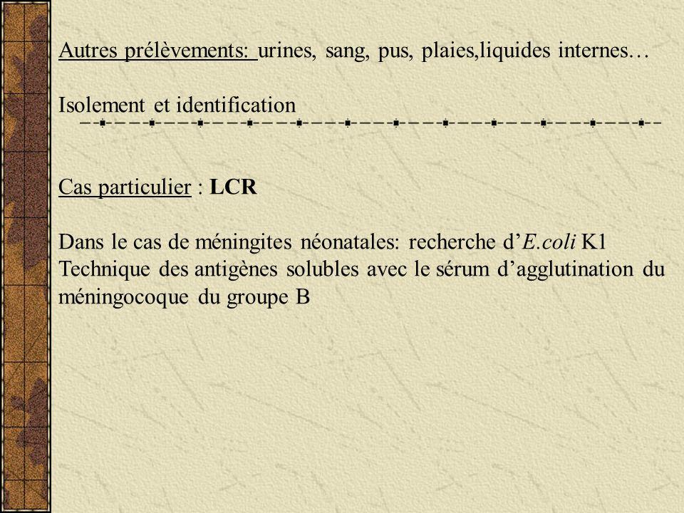 Autres prélèvements: urines, sang, pus, plaies,liquides internes… Isolement et identification Cas particulier : LCR Dans le cas de méningites néonatal