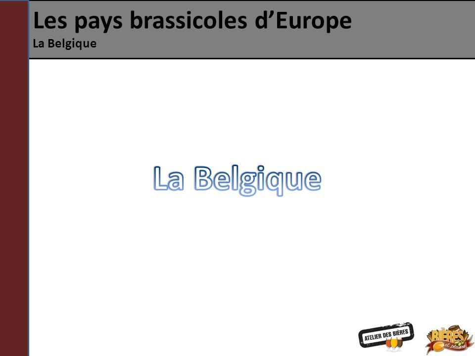 Les pays brassicoles dEurope La Belgique Histoire des brasseries 19 e siècle – Vers 1900, il y a 3223 brasseries en Belgique.
