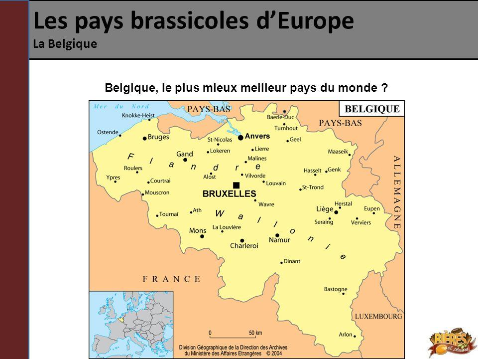 Les pays brassicoles dEurope La Belgique DISCUSSION Quelle est la philosophie qui se cache derrière les bières belges .