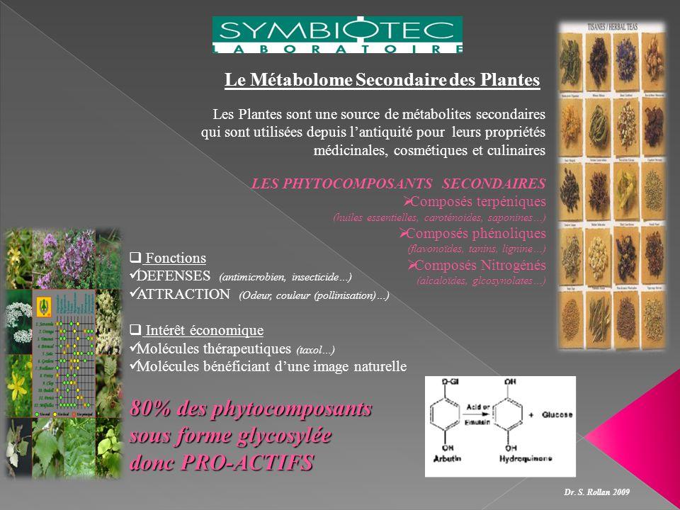 LES PHYTOCOMPOSANTS SECONDAIRES Composés terpéniques (huiles essentielles, caroténoides, saponines…) Composés phénoliques (flavonoïdes, tanins, lignin
