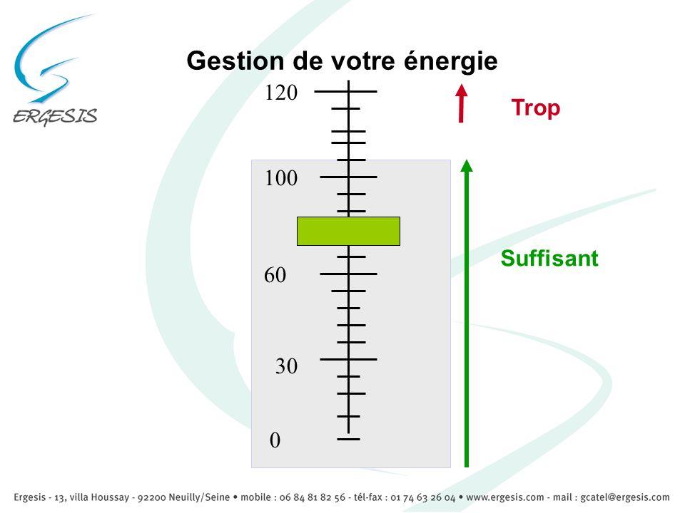 Gestion de votre énergie 0 100 60 30 120 Suffisant Trop