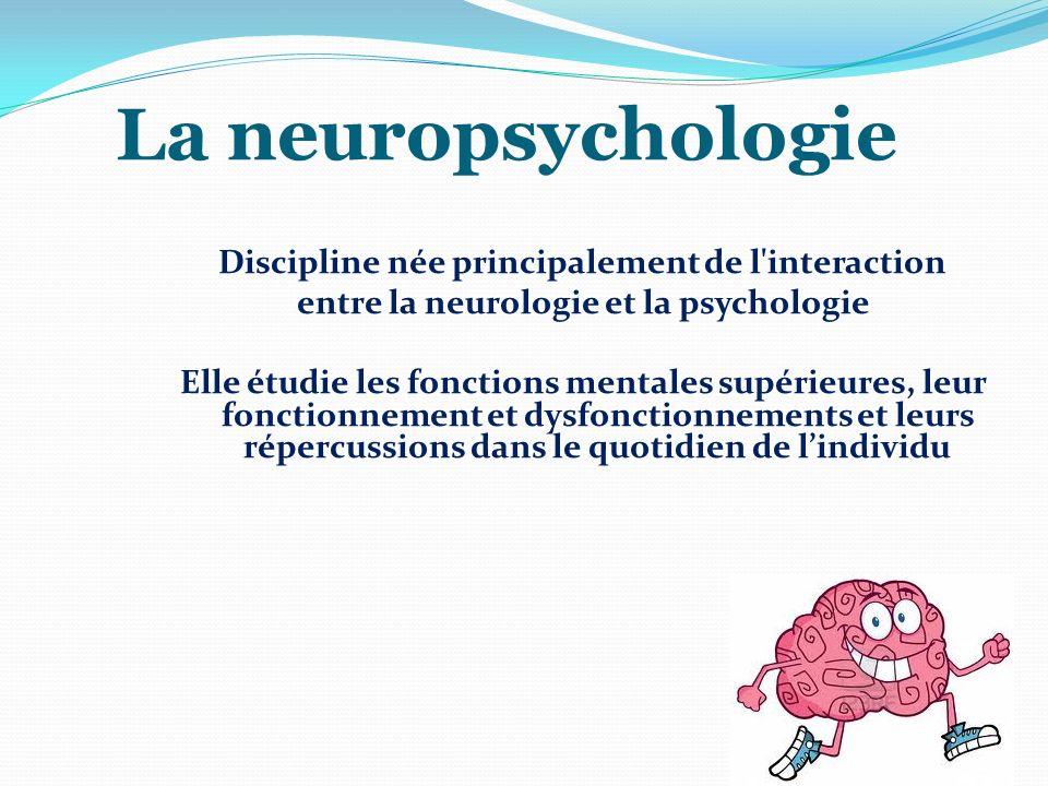 La neuropsychologie Discipline née principalement de l'interaction entre la neurologie et la psychologie Elle étudie les fonctions mentales supérieure