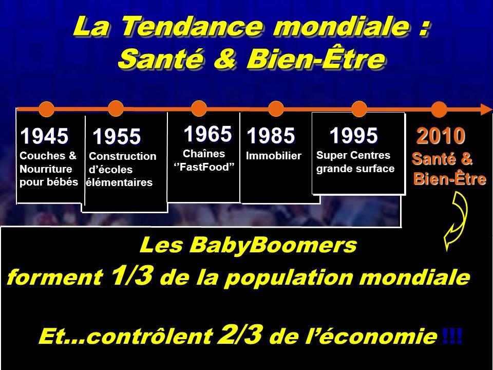 Janvier 2005 Serida Marketing Group 11 1945 Couches & Nourriture pour bébés1945 Couches & Nourriture pour bébés 2010 2010 Santé & Santé & Bien-Être Bi