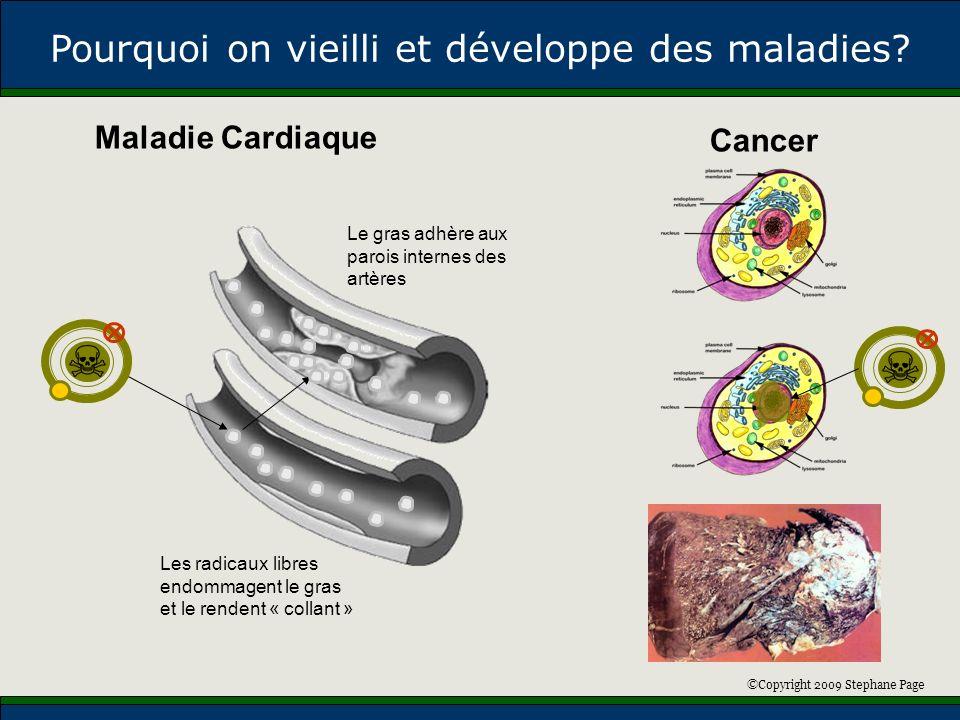 ©Copyright 2009 Stephane Page Maladie Cardiaque Cancer Pourquoi on vieilli et développe des maladies? Les radicaux libres endommagent le gras et le re