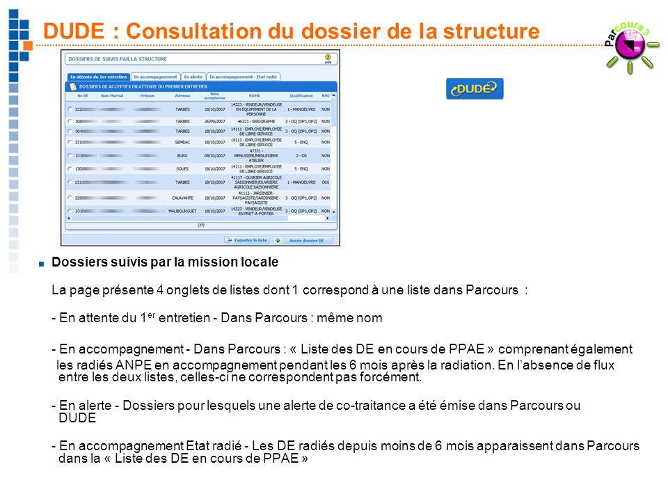 22 DUDE : Consultation du dossier de la structure Dossiers suivis par la mission locale La page présente 4 onglets de listes dont 1 correspond à une l