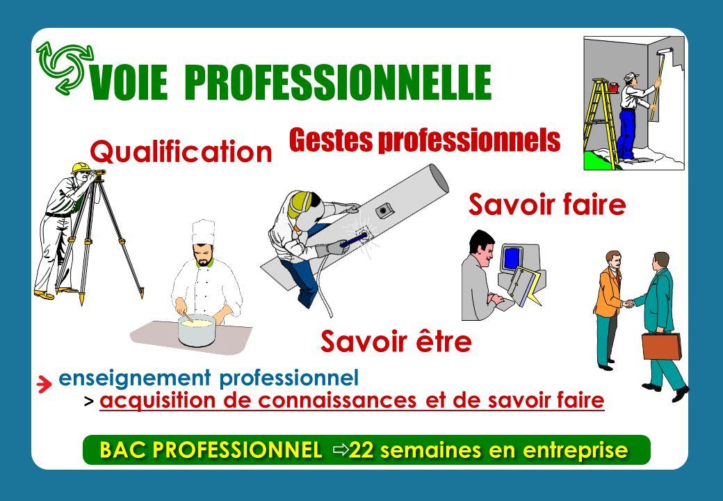 enseignement professionnel > acquisition de connaissances et de savoir faire Qualification BAC PROFESSIONNEL Gestes professionnels Savoir être 22 semaines en entreprise VOIE PROFESSIONNELLE Savoir faire