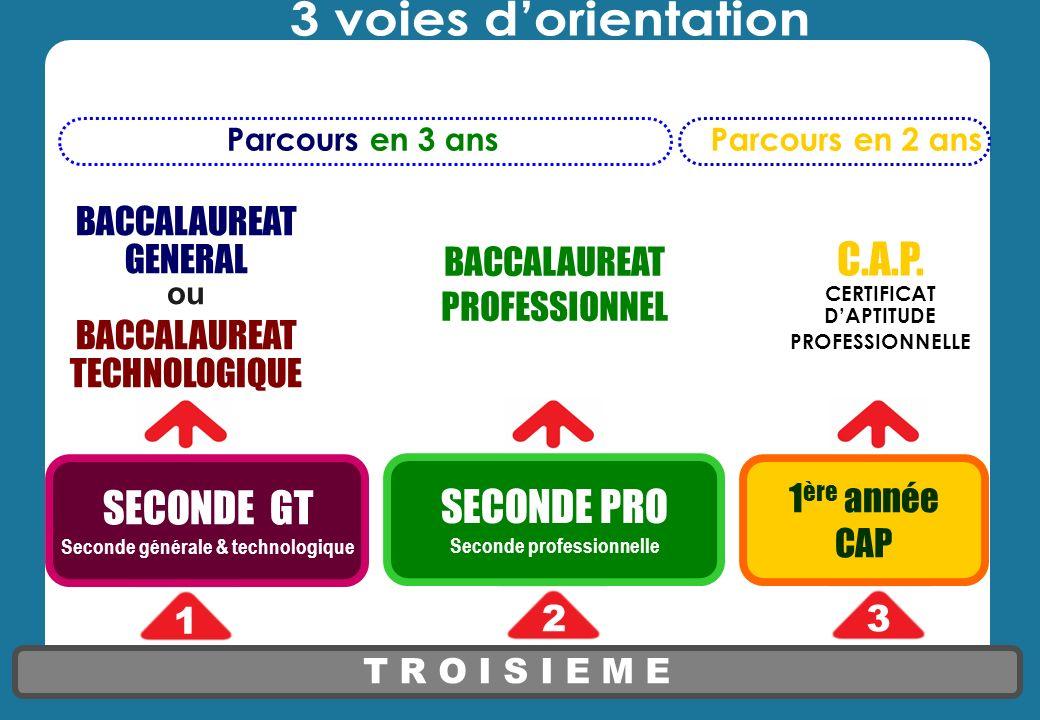 T R O I S I E M E SECONDE GT Seconde générale & technologique 1 23 BACCALAUREAT GENERAL ou BACCALAUREAT TECHNOLOGIQUE BACCALAUREAT PROFESSIONNEL C.A.P.