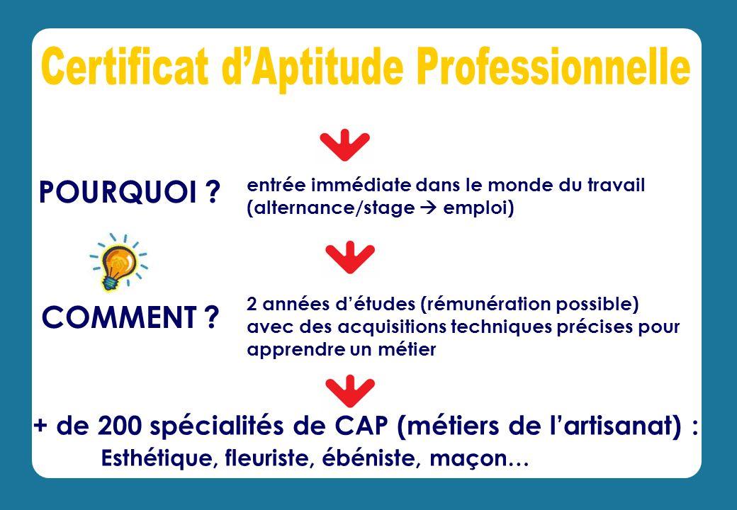 + de 200 spécialités de CAP (métiers de lartisanat) : Esthétique, fleuriste, ébéniste, maçon… COMMENT .