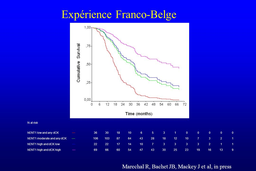 Expérience Franco-Belge Marechal R, Bachet JB, Mackey J et al, in press N at risk hENT1 low and any dCK 36301810653100000 hENT1 moderate and any dCK 1